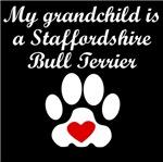 Staffordshire Bull Terrier Grandchild