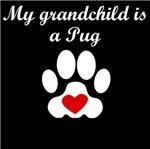 Pug Grandchild