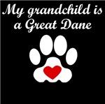 Great Dane Grandchild