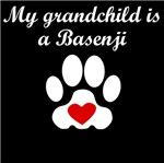 Basenji Grandchild