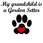Gordon Setter Grandchild