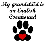 English Coonhound Grandchild