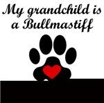 Bullmastiff Grandchild