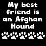 My Best Friend Is An Afghan Hound