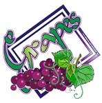 NEW!  Grapes (purple)