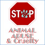 Stop Animal Abuse & Cruelty
