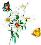 FLOWERS, BUTTERFLIES, BIRDS AND GARDENING