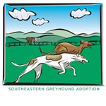 COUNTRY GREYHOUNDS