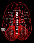<b>Transmissions from the Underbrain</b>