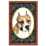Pretty American Staffordshire Terrier Posters