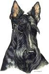 Scottish Terrier Scotty Dog Portrait Designs