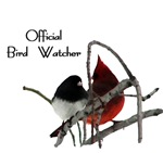 Bird Watcher