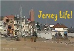 Jersey Life Postcard (Package of 8)
