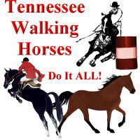 TWH do it ALL!