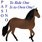 Paso Fino To ride is to own