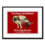 No Pug Left Behind