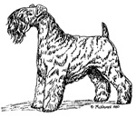 Kerry Blue Terrier items with this design