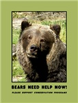 Conservation: Protecting Bears