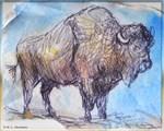 Buffalo, animal art