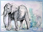 Elephant, wildlife art!