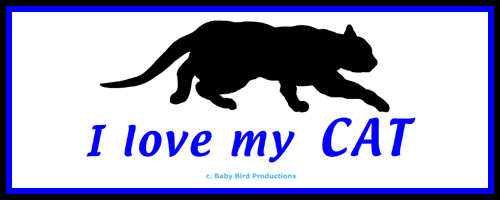CAT T-SHIRTS & GIFTS