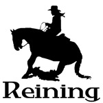 Reining Horse and Rider