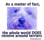 Terriers Rule