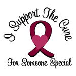 I Support The Cure Myeloma (Someone Special)