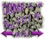Dumb Box Rocks