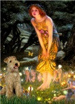 MIDSUMMER'S EVE<br> & Lakeland Terrier