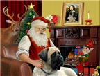 SANTA AT HOME<br>With Bull Mastiff (#4)
