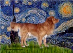 STARRY NIGHT<br>& Nova Scotia Duck Tolling Retriev