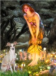 MIDSUMMER'S EVE<br>Italian Greyhound