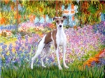 GARDEN AT GIVERNEY<br>Italian Greyhound