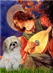 ANGEL WITH MANDOLIN<br>& Shih Tzu