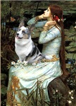 OPHELIA SEATED<br>& Blue Merle Welsh Corgi
