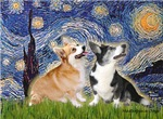 STARRY NIGHT<br>& 2 Welsh Corgis