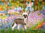 GARDEN AT GIVERNEY<br>& Chinese Crested