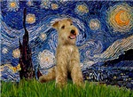 STARRY NIGHT<br> & Lakeland Terrier