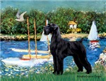 SAILBOATS<br>& Giant Schnauzer