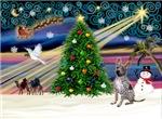 CHRISTMAS MAGIC<br> & Zolo
