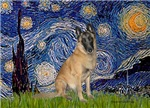 STARRY NIGHT<br>& Belgian Malanois