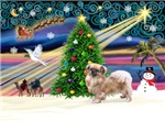 CHRISTMAS MAGIC<br>& Tibetan Spaniel #3