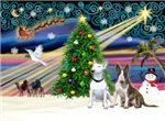 CHRISTMAS MAGIC<br>& 2 Bull Terriers