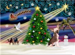 CHRISTMAS MAGIC<br>& Chinese Crested