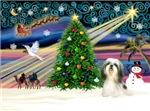 CHRISTMAS MAGIC<br>& Shih Tzu