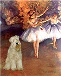 DANCER (#1-B)<br>& Wheaten Terrier