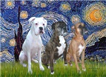 STARRY NIGHT<br>& Three Boxers