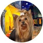 Yorkshire Terrier #7<br>Terrace Cafe