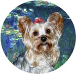 Yorkshire Terrier (#13)<br>in Lilies #5